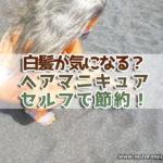 ヘアマニキュア白髪染め01